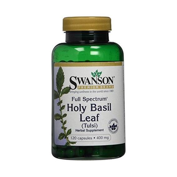o Tulsi 120 semillas de albahaca santa + Ocimum sanctum