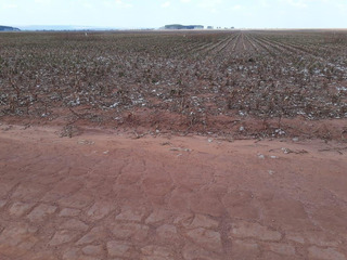 Fazenda Para Venda Em Costa Marques, (zona Leste) - 2000/2929_1-1501652