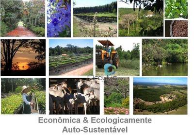Fazenda Rural À Venda, Zona Rural, Botucatu - Fa0015. - Fa0015