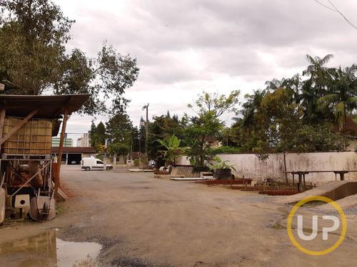 Lote / Terreno Em Atiradores  -  Joinville - 8556