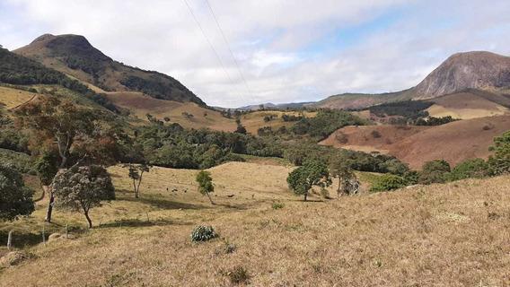 Sítio No Sul De Minas, Cidade De Carvalhos , Ótimo Acesso , Perto Do Vale Do Muquém , Com 10 Hectares. - 808