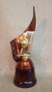Trofeo Metálico Envolvente Golf Hoyo Uno 40cm Base Madera