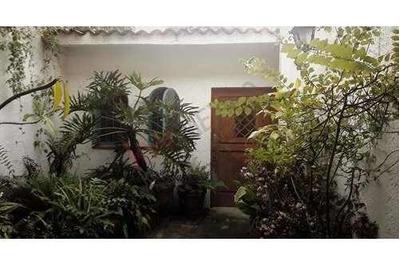 Casa Sola Un Nivel Jardin Jacarandas Cuernavaca