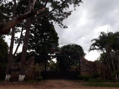 Chácara Com 9 Dormitórios À Venda, 3900 M² Por R$ 1.200.000 - Recreio Tsuriba - Campinas/sp - Ch0131