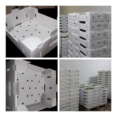 Cartonplast Cajas Para Exportación