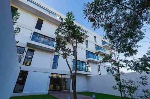 Renta Departamento Amueblado Planta Baja En Edificio Elite