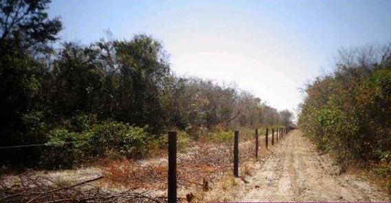 Fazenda 4578 Hectares Em Barreiras - Fa0059