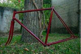 Cuadro Bicicleta De Ruta Doniselli