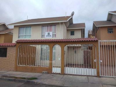 Oficina Guanaco 11694