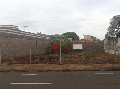 Terreno Residencial À Venda, Jardim Moysés Miguel Haddad, São José Do Rio Preto. - Te0338