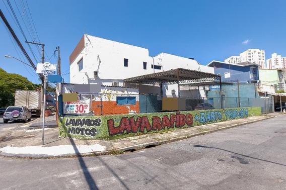 Terreno Para Alugar, 250 M² - Vila Augusta - Guarulhos/sp - Te0568