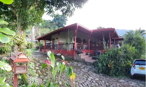 Finca Cafetera Valparaíso - Cerca Rio Cartama
