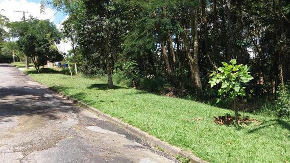 Terreno À Venda, 5265 M² Por R$ 380.000,00 - Vila Real Moinho Velho - Embu Das Artes/sp - Te8823