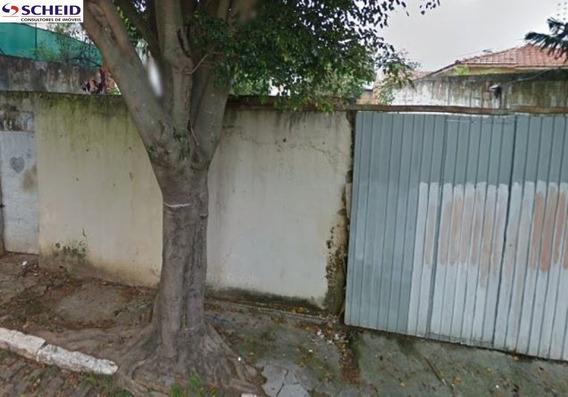 Área Adequada Para Condomínio - Mr63935