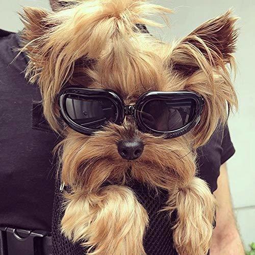 Kailian Dog Goggles Gafas De Sol Impermeables