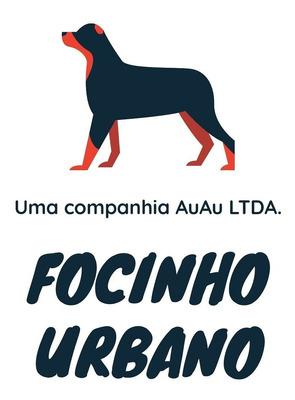 Focinho Urbano Petcare/cuidadora De Animais