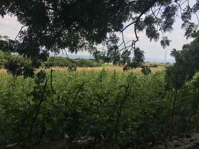 Terreno En Totolapan