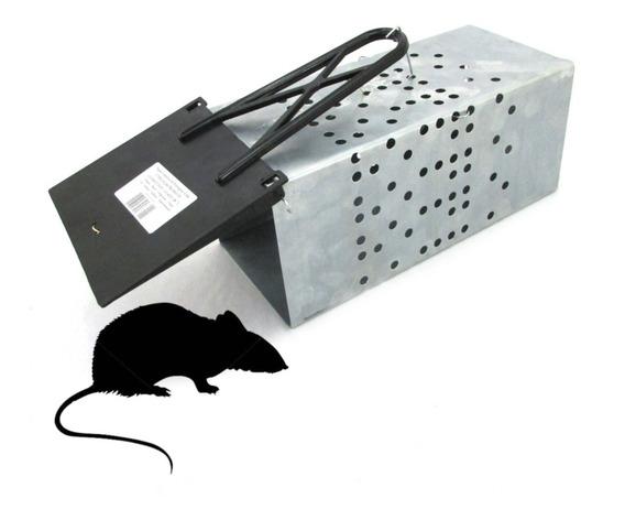 Ratoeira Tipo Gaiola Grande Metálica Para Captura De Ratos