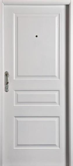 Puerta De Seguridad Nexo - Usada