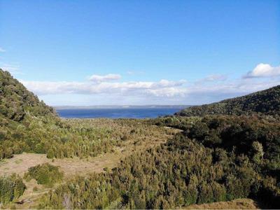 Lago Huillinco 10