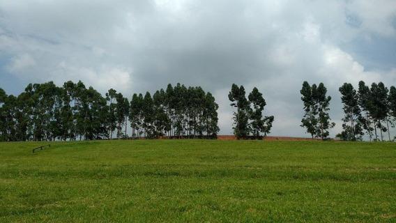 Terreno À Venda, , Condomínio Fazenda Boa Vista - Porto Feliz/sp - 11672