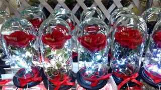 Rosas Eternas De Colombia Con Luz Led