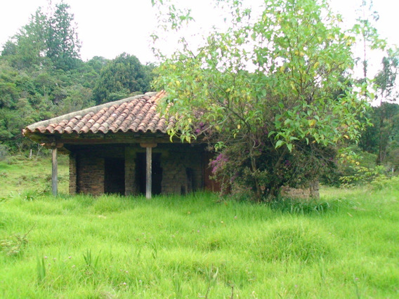 Rancho Antiguo 2 Alcobas Para Remodelar