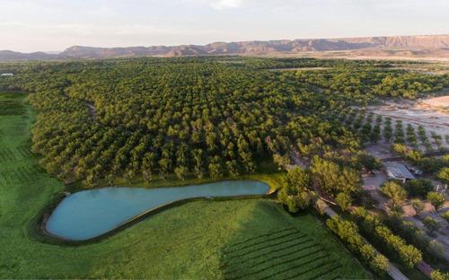 Imagen 1 de 9 de Terreno En Venta (lotes) Parras De La Fuente Coahuila