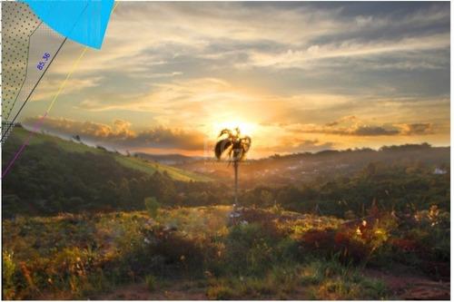 Terreno Em Vila Nova - El56356770