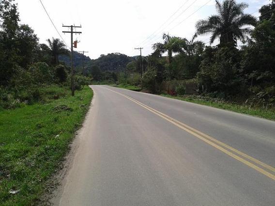 Terreno Para Venda Em Peruíbe, Estância Bambu - 145