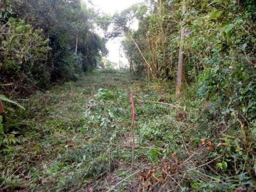 Terreno No Litoral Com 270 M², Em Itanhaém/sp 6462-pc