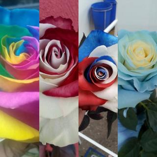 Rosas-girasoles-amarantos-tallos-hortensias-preservados