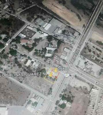 Terreno En Renta En Avenida Teofilo Salinas Y Benito Juarez
