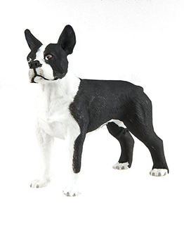 Safari Ltd Best In Show Perros - Boston Terrier - Mano Reali