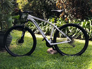 Bicicleta Specialized Rockhopper 2017