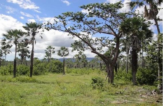 Terreno Em Centro, Caucaia/ce De 0m² À Venda Por R$ 650.000,00 - Te194700