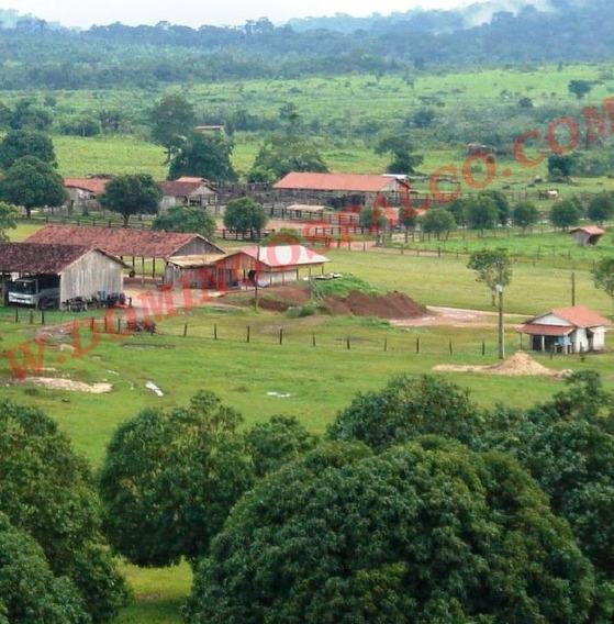 Venda - Fazenda - Zona Rural - Rondolândia - Mt - D0097