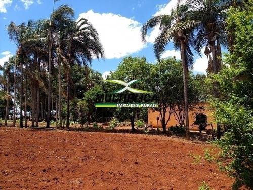 2,22 Alq. Chácara À Venda Em Araguari Mg Aceita Permuta Em Casa Araguari, - 379