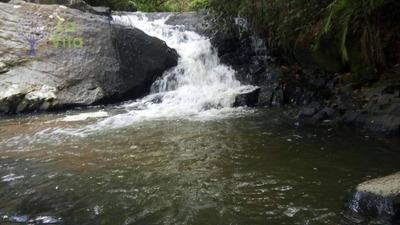 Sítio Rural À Venda, Alto Benedito, Benedito Novo. - Si0013