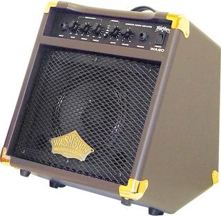 Washburn Wa30 Amplificador Acústico