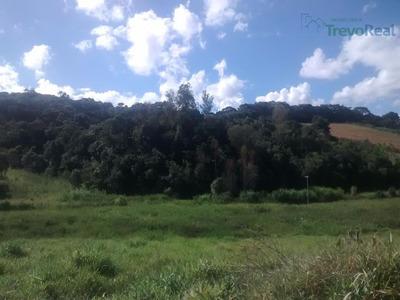 Sítio Rural À Venda, Recanto Santo Antonio Do Pinhal, Pinhalzinho. - Si0007
