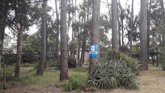 Terreno Atlàntida Pinares Te59