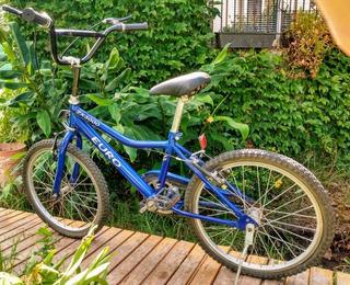 Bicicleta Euro 20 Muy Buena Usada