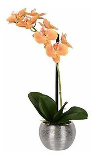 Vickerman Fn180401 Orquídea Morada Floral Para Uso Diario