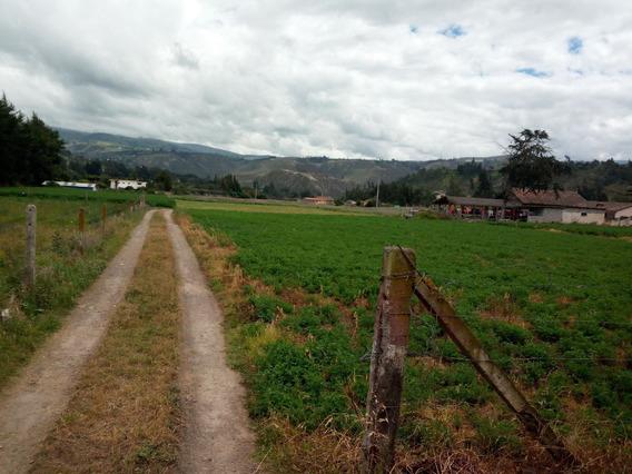 Vendo Terreno Tras El Pansaleo
