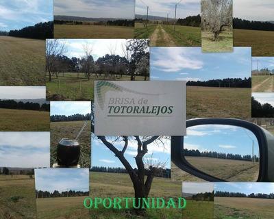 Oportunidad Única! Lotes En Los Reartes, Calamucita, Córdoba