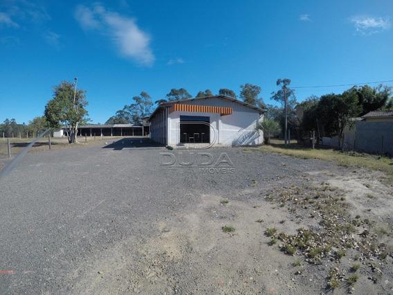 Terreno Comercial - Vila Isabel - Ref: 17376 - L-17376