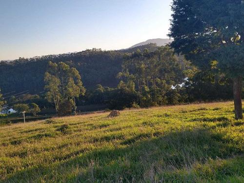 C12- Vendo Meu Terreno Com Preços Populares
