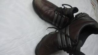 Zapatos De Golf adidas Tour 360 29.5cm