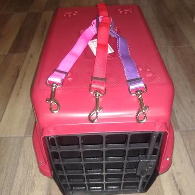 Transporto Seu Cachorro Ou Gato!